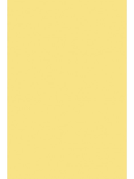 No.233 Dayroom Yellow