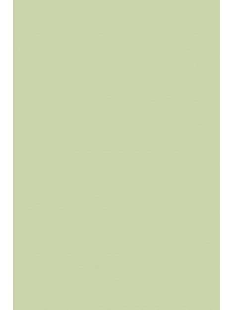No.32 Cooking Apple Green
