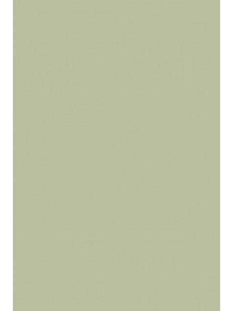 No.234 Vert de Terre