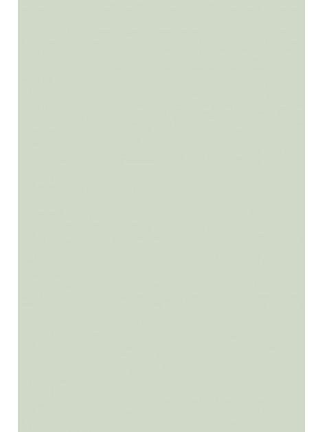 No.204 Pale Powder